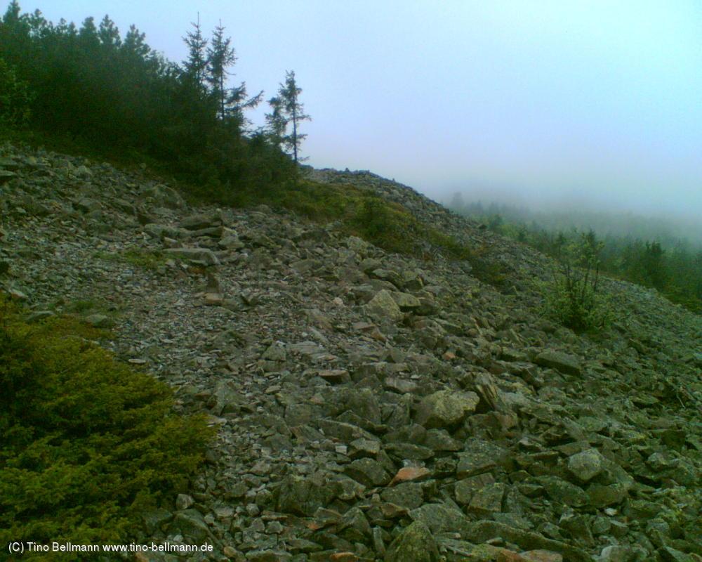 Auf dem 905 m hohen Kahleberg im Osterzgebirge