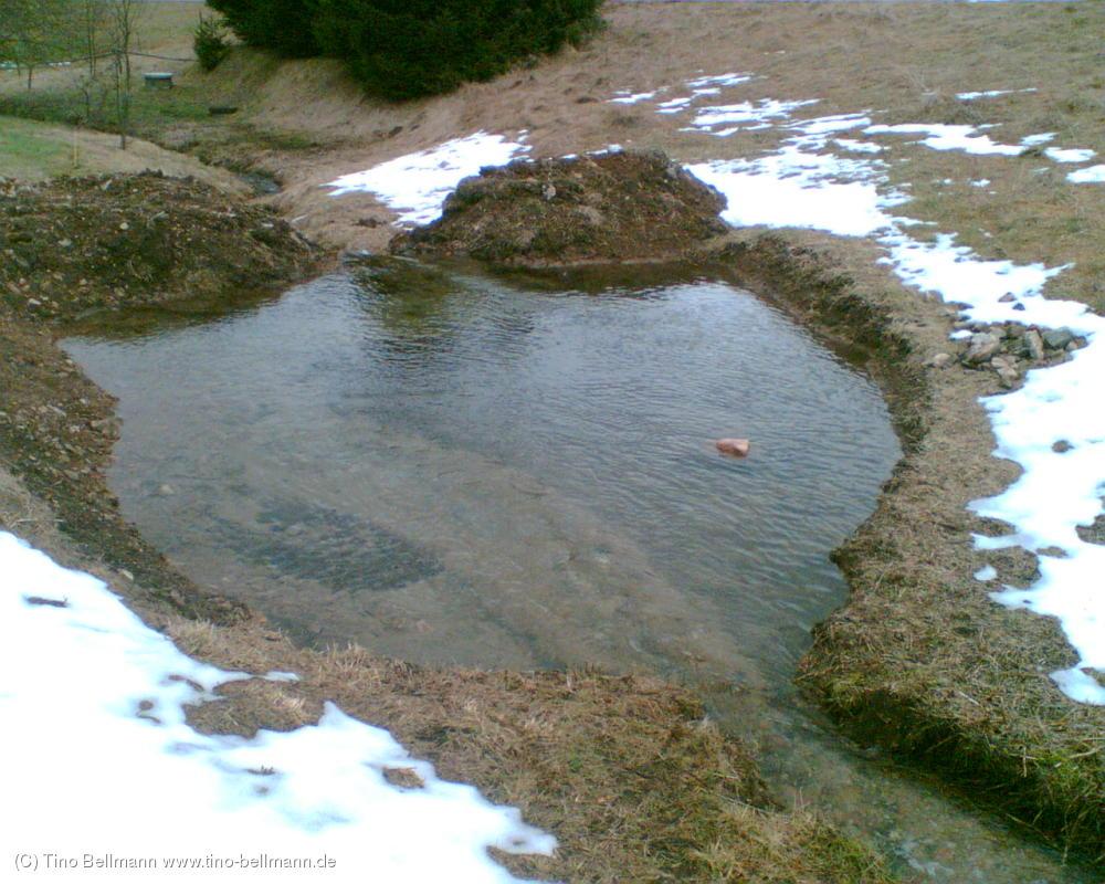 Meine Teich-Baustelle am 4. Januar 2012